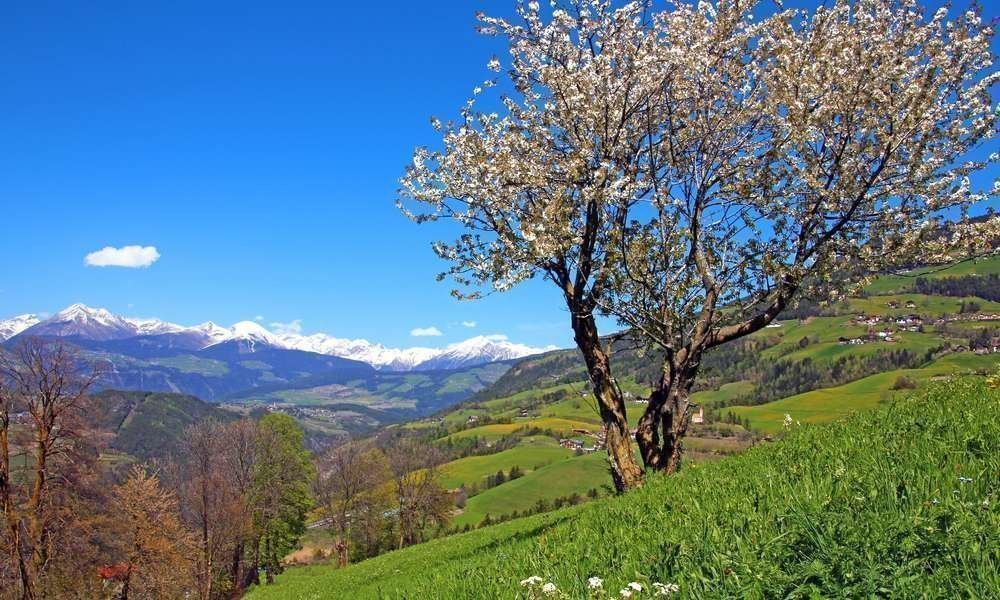 Holiday in Brixen – Eisack Valley – Plose – South Tyrol